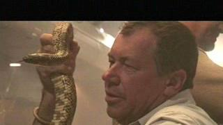 Snakes On A Plane: Featurette