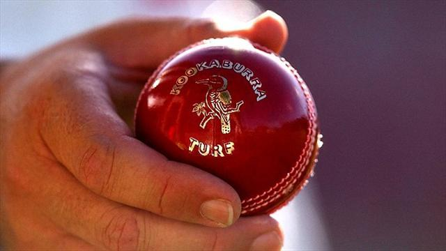 Cricket - CSA to add to itinerary