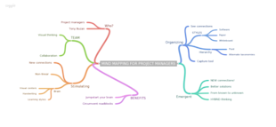 Mind Mapping for the Project Manager image MIND MAPPING FOR PROJECT MANAGERS 600x277