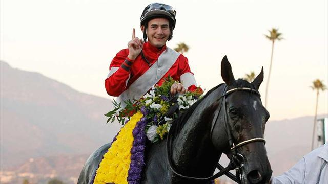 Horse Racing - Profiles of 2013 Breeders' Cup Classic runners