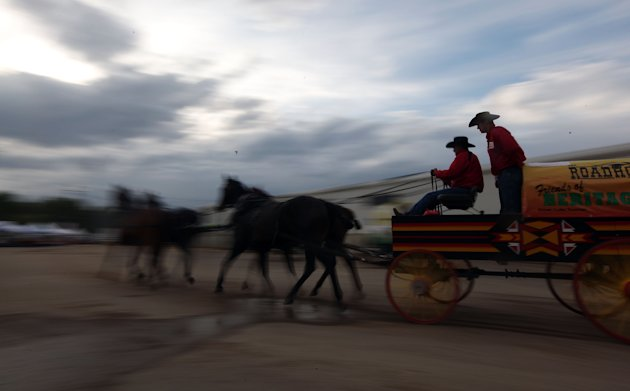 Chuckwagon racers warm-up before competing in the Calgary Stampede. Mario Tama/Getty Images