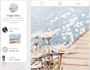 How to Get Started With We Heart It [Complete Guide] image Find More Details About Images on We Heart It