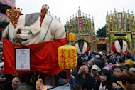 Pigs, manipulated to increase the appearance of their size, are displayed during the controversial 'Holy Pig' festival outside a Taoist temple in Shanhsia, the New Taipei city, on February 15, 2013. Animal rights activists protested the traditional ritual in which the swine are force-fed before being sacrificed in public