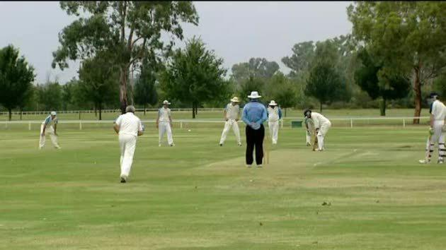 Dubbo cricket highlights