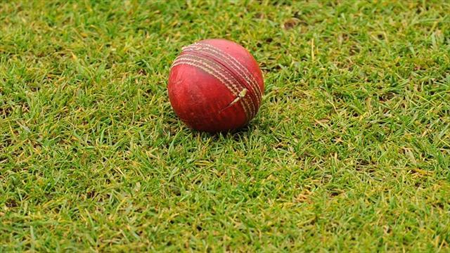 Cricket - Green light for Harare Test