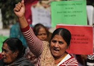 Indian activists shouts slogans during a protest against the gang rape and murder of a student in New Delhi on January 15, 2013