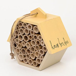 Stylish home for solitary bees