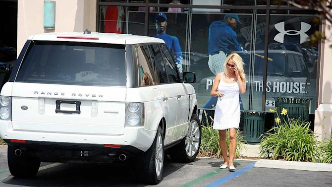 Anderson Pam Range Rover