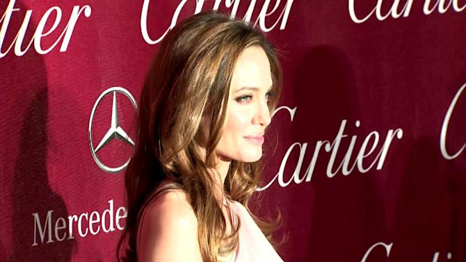 Angelina Jolie Gets Big Help for Next Directing Gig