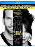 Silver Linings Playbook Box Art
