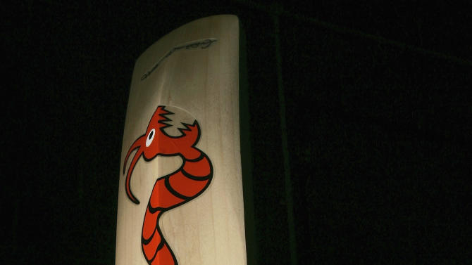 Ashes Fever Hits Flintoff's Cricket Bat Manufacturer Woodworm