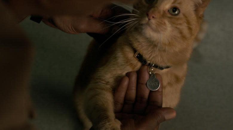 <p>03.驚奇隊長、貓:在《驚奇隊長》中搶盡幾乎所有目光的橘貓,是否有機會在接下來的《復仇者聯盟:終局之戰》再度登場呢?凱文費吉被問及此事時,也語帶保留。(圖:迪士尼) </p>