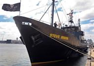 File photo of the Sea Shepherd ship 'Steve Irwin' is shown in Melbourne. The ship left Melbourne on November 5 to join Sea Shepherd's ninth campaign, named Operation Zero Tolerance. The new operation is its largest against Japan's whale hunt.