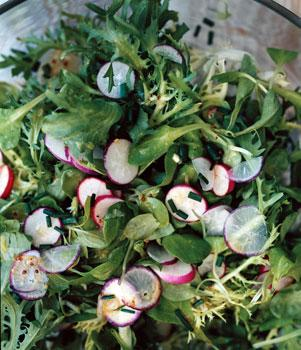 Mâche, Frisée, and Radish Salad with Mustard Vinaigrette