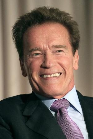 "FILE - In this Dec. 15, 2011 file photo, Former California Gov. Arnold Schwarzenegger smiles during a panel at the Governor's Conference on Extreme Climate Risks and California's Future at the California Academy of Sciences in San Francisco.  Schwarzenegger will star opposite Sylvester Stallone in the action/thriller ""The Tomb."" (AP Photo/Jeff Chiu, file)"