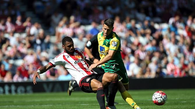 Wes Hoolahan sacrificed as 10-man Norwich suffer defeat at Southampton