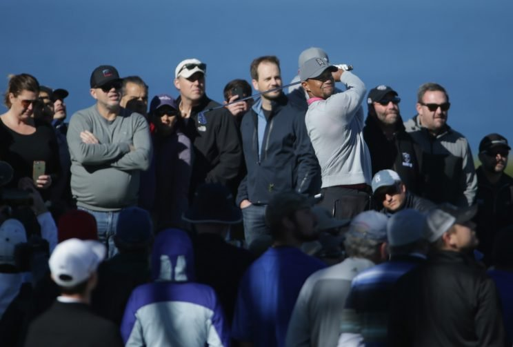 Tiger Woods was four strokes short of making the cut at Torrey Pines. (Getty Images)