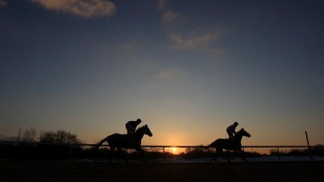 Horse Racing - Tipping Column: Cheltenian to show class