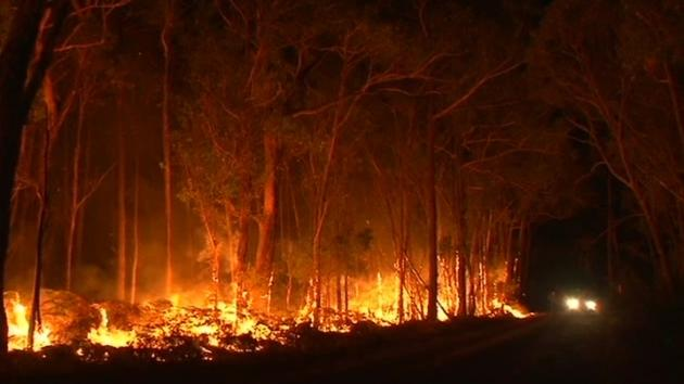 NSW Boils As Fire Dangers Soar