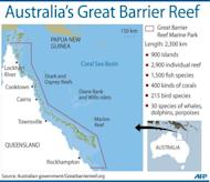 """Graphic showing Australia's Great Barrier Reef. UNESCO has urged decisive action from Australia to protect the Great Barrier Reef from a gas and mining boom, warning it risked being put on its list of world heritage sites deemed """"in danger"""""""