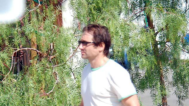 Duchovny David Pinkberry