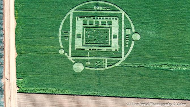Salinas Crop Circle Destroyed by Landowner