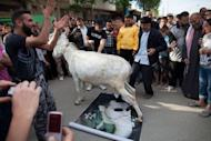 "Syrian anti-regime protesters watch as a donkey walks on a portrait of President Bashar al-Assad during an anti-election demonstration in the city Qusayr, near Homs in Syria, on May 7, 2012. International powers are ""in a race against time"" to prevent all-out civil war in Syria, UN leader Ban Ki-moon has warned"