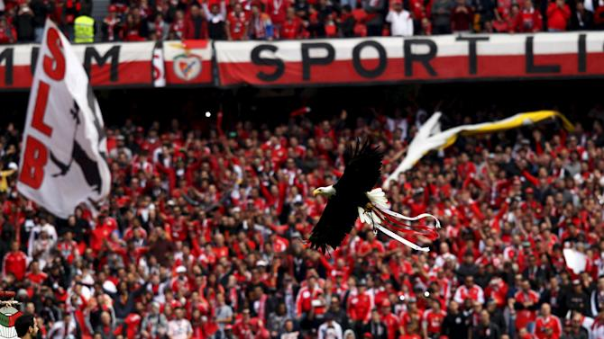 Benfica's mascot eagle Vitoria fly before their Portuguese Premier League soccer match against Porto at Luz stadium in Lisbon