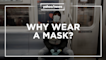 Why wear a mask in public? Yahoo News explains.