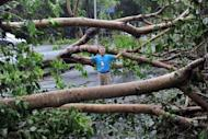 A man stands amongst a fallen tree, during typhoon Tembin in Taitung, eastern Taiwan, on August 24, 2012. Across the island, more than 50,000 households were without power, according to the state Taiwan Power Company