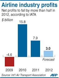Graphic charting annual profits of the global airline industry, which would plummet more than half in 2012, according to the International Air Travel Association on Monday