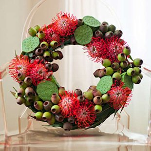 Green eucalyptus pods and red pincushions