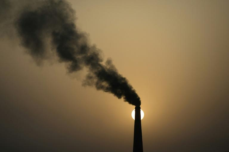 Los impuestos al carbono son necesarios para combatir el cambio climático, según el BM