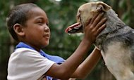 Dog Without Snout Kabang Beats Cancer