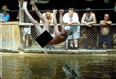 An ill-advised crocodile stunt in Paramount's jackass: the movie