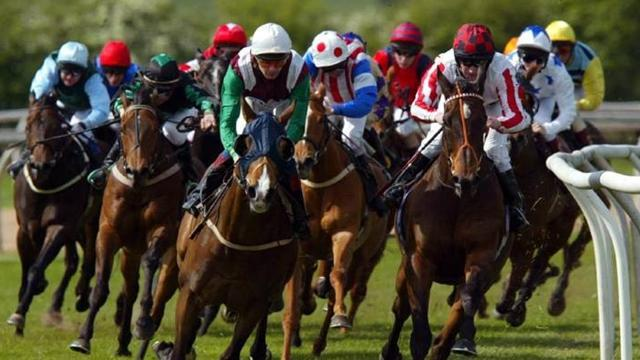 Horse Racing - Racing results: Tuesday 8 January