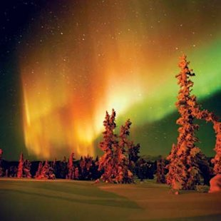 Both fall color and the cosmic aurora borealis