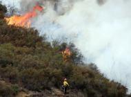 Vigili del fuoco: Oltre 20mila intreventi per incendi da inizio estate