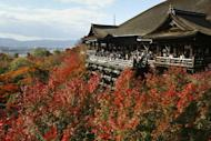 Colored leaves surround Kiyomizu Temple in Japan's ancient city of Kyoto on 22 November 2003. A court in Japan has jailed a 66-year-old man for a year for stealing 10 yen (12 cents) from a temple offering box, reducing his original sentence by eight months