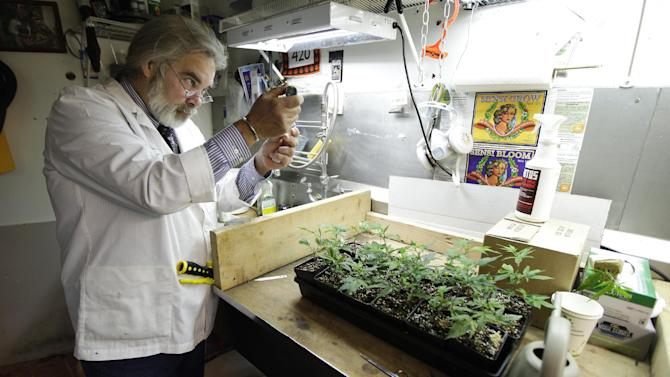 Jake Dimmock, co-owner of the Northwest Patient Resource Center medical marijuana dispensary, works on balancing the pH level of the soil used to grow new medical marijuana plants, Wednesday, Nov. 7, 2012, in Seattle. After voters weighed in on election day, Colorado and Washington became the first states to allow legal pot for recreational use, but they are likely to face resistance from federal regulations. (AP Photo/Ted S. Warren)