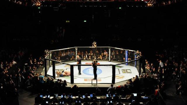 Mixed Martial Arts - MacDonald looking for rise to elite