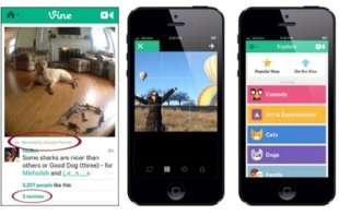 Against the Ropes: Can Vine Survive Instagram Video? image Instagram Vs Vine