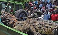 Giant Man-Eating Crocodile Captured In Uganda