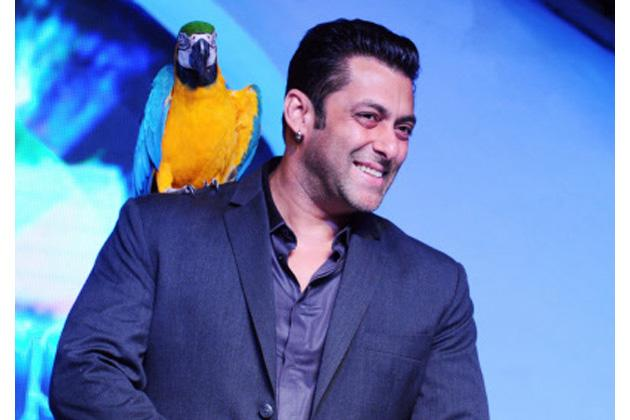 'Wow' and 'Aow' in Bigg Boss 7