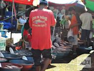 Several stakeholders, including fishermen, are working with the local government and the regional office of the Bureau of Fisheries and Aquatic Resources on how to improve the bangus (milkfish) industry in Pangasinan, after the disastrous fish kill last May.
