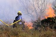 A Spanish firefighter tries to extinguish a forest fire near the spanish village of Figueras, by the French border. Hundreds of firefighters, backed by water-bombing planes, battled a wind-fuelled wildfire in northeast Spain that left four French nationals dead and trapped thousands of people indoors