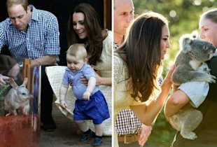 Kate Middleton, Prince George and Prince William at the Zoo