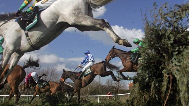 Horse Racing - 'You just don't understand', trainer tells Grand National critics