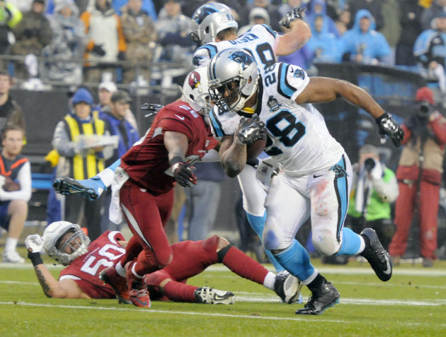 Newton, defense lead Panthers past Cardinals 27-16