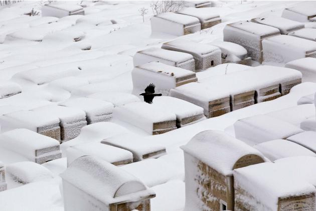 A crows flies over the snow-covered Mount of Olives cemetery outside Jerusalem's Old City